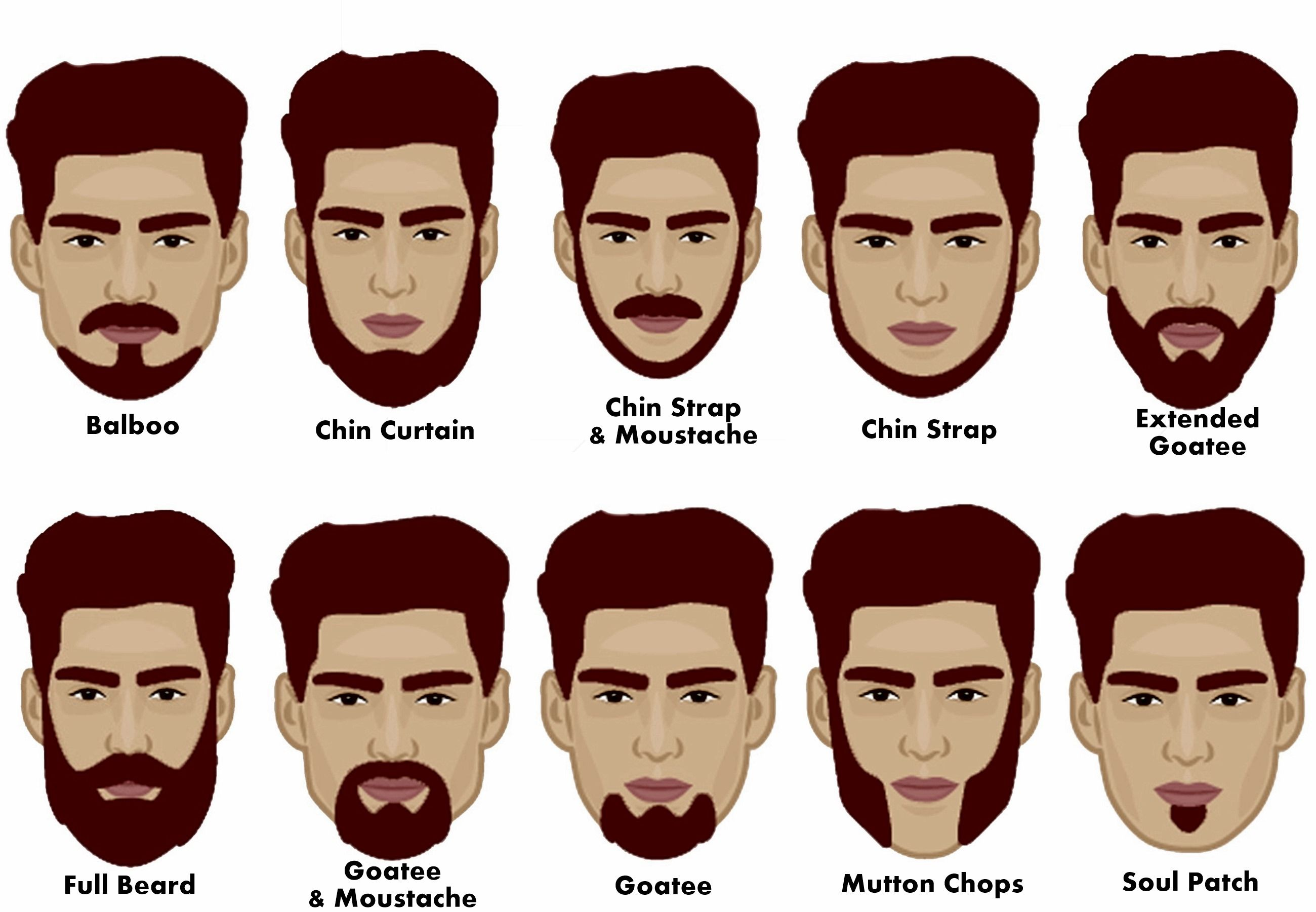 Types Of Chin For Beard Google Search Beard Styles