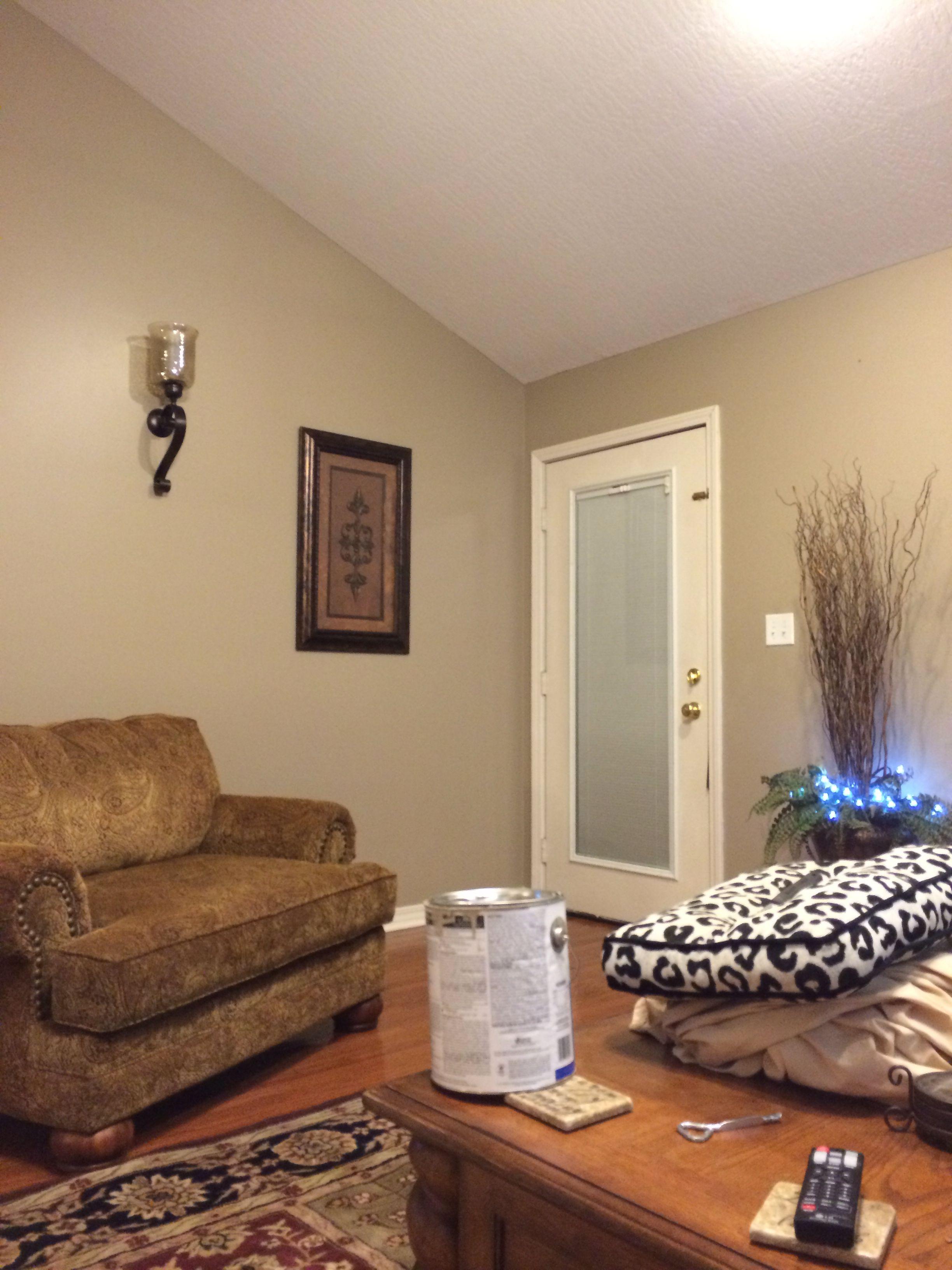 taupe interior paint