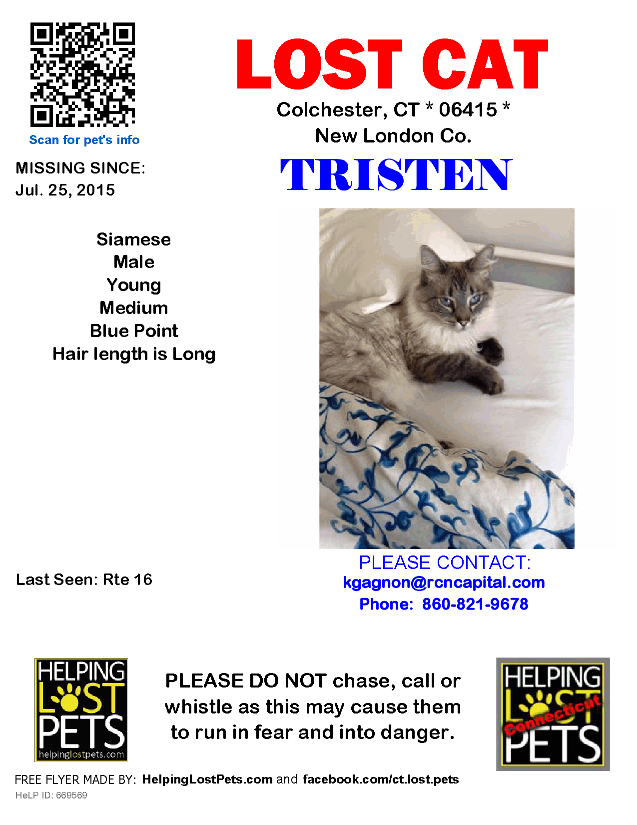 Lost Cat Male Colchester Ct Usa 06415 Lost Cat Losing A Pet Cats