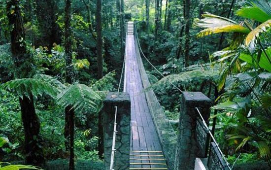 9 Best Costa Rica Zip Line u0026 Canopy Tours   Costa Rica Experts & 9 Best Costa Rica Zip Line u0026 Canopy Tours   Costa Rica Experts ...