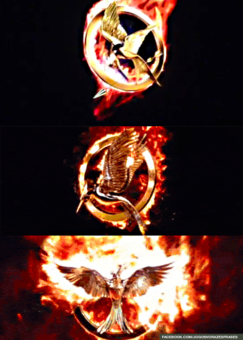 The Hunger Games Explorer Hunger Games Hunger Games Catching Fire Hunger Games Trilogy