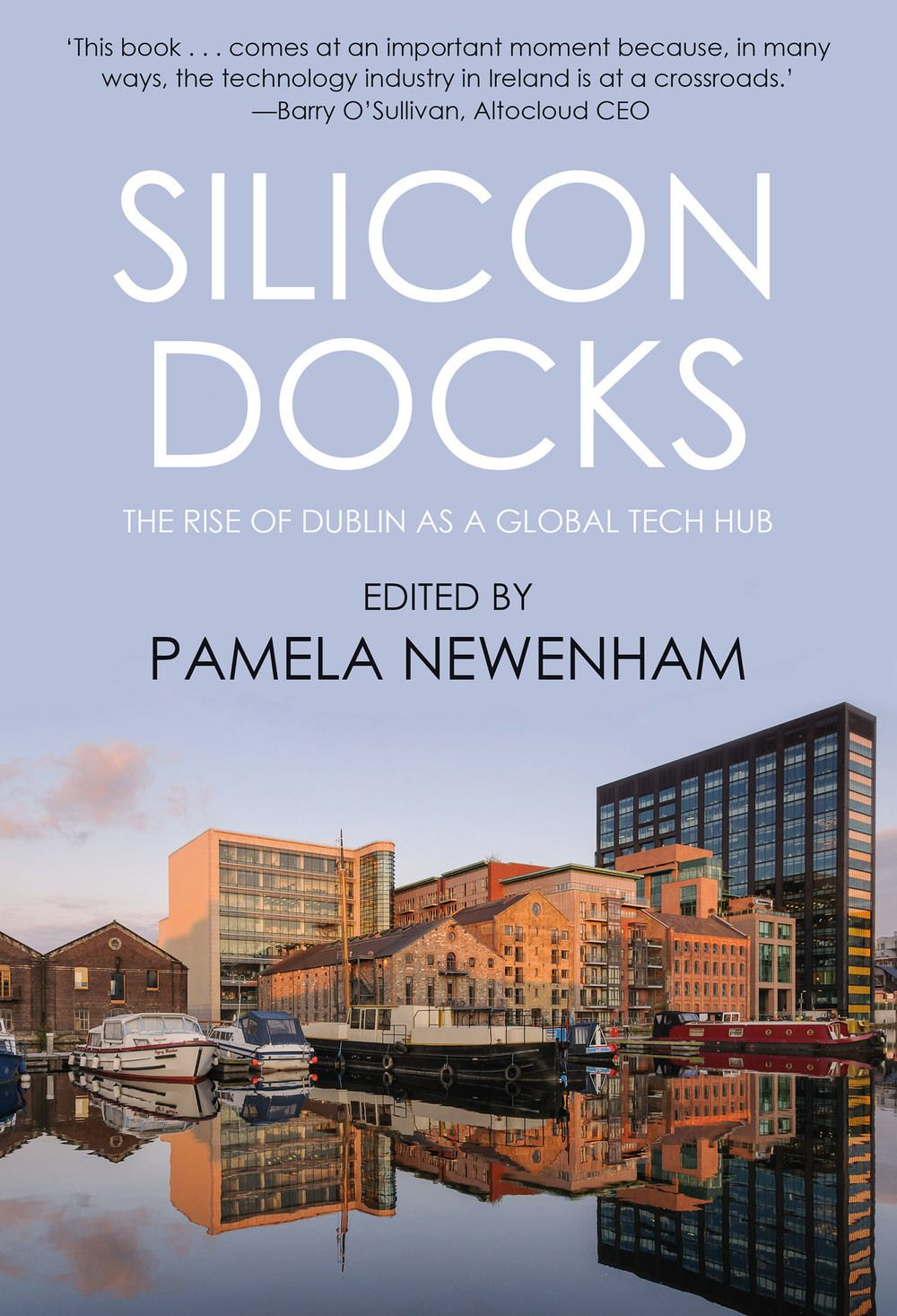 Silicon Docks The Rise Of Dublin As A Global Tech Hub Business