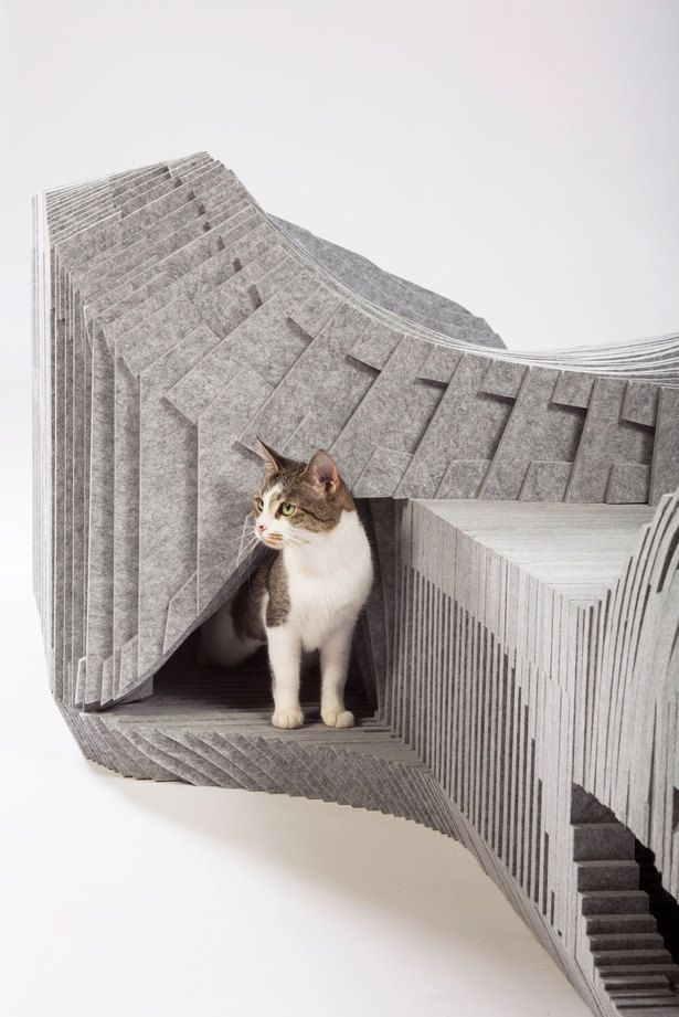Cat-à-Tête   Archinect article about the feral cat shelter design by Arktura and BuroHappold.