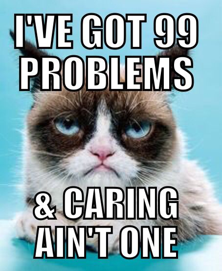 2130d07cec8a40057adad92c89d8674f just funny photos of cats sitting like humans grumpy cat meme