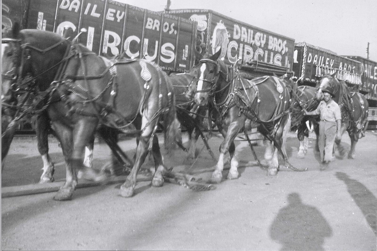 Dailey Bros Circus 1960