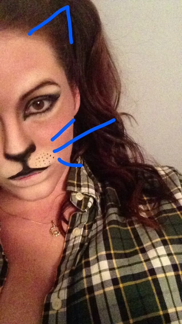 Cat makeup . Halloween makeup