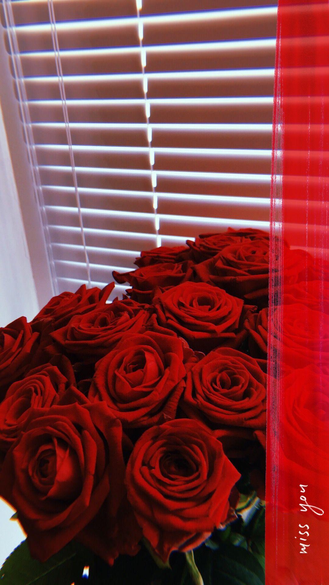 Pin By Majda Metrouh On Cvety Flower Phone Wallpaper Rose Wallpaper Flower Aesthetic