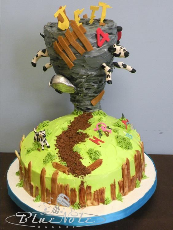 Image Result For Tornado Grooms Cake Twin Birthday Cakes