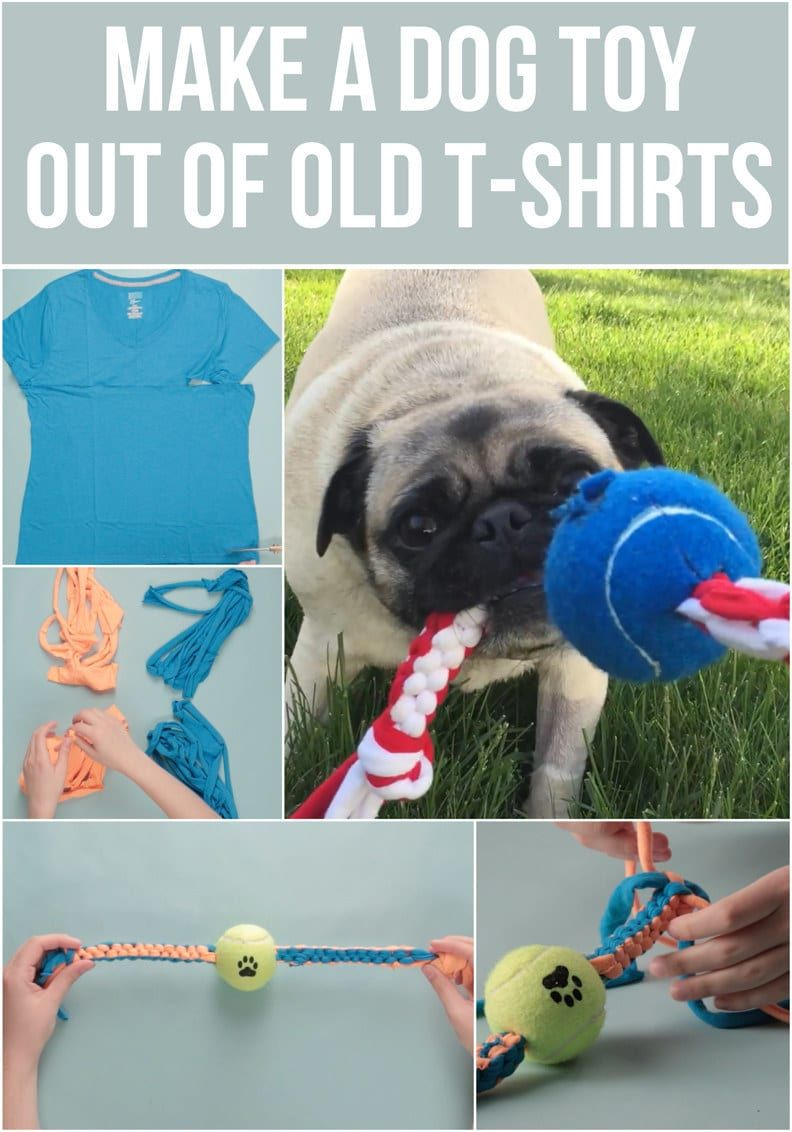 Make An Epic Toy For Your Dog Out Of Your Old T Shirts Dog Toys