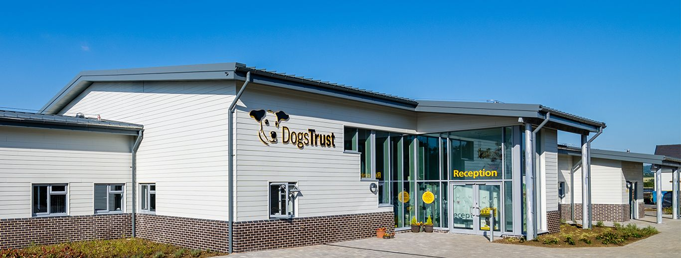 Take A Trip To Your Local Dogs Trust This Mother S Day We Have 20 Rehoming Centres Across The Uk So There S Bound To Rehoming Basildon Dog Lovers