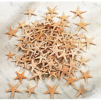 Starfish In Bulk Wedding Supplies Wholesale Discount Wedding Favors Wedding Gift Favors
