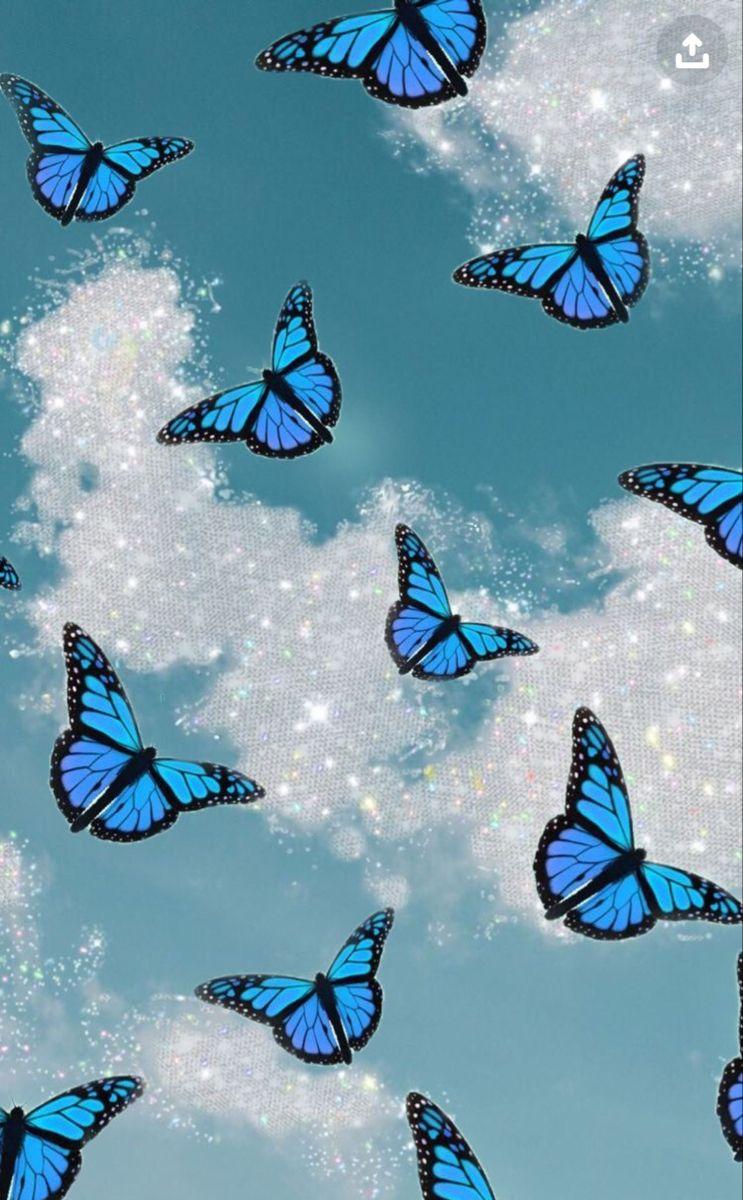 Aesthetic Butterfly Blue Butterfly Wallpaper Butterfly Wallpaper Iphone Butterfly Wallpaper