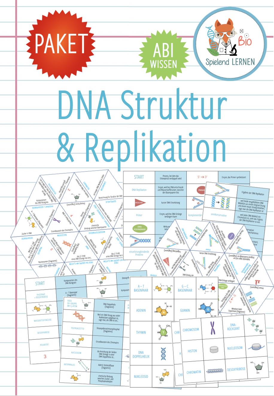 DNA Struktur & Replikation – 20x Aktivitäten und Spiele Abitur ...