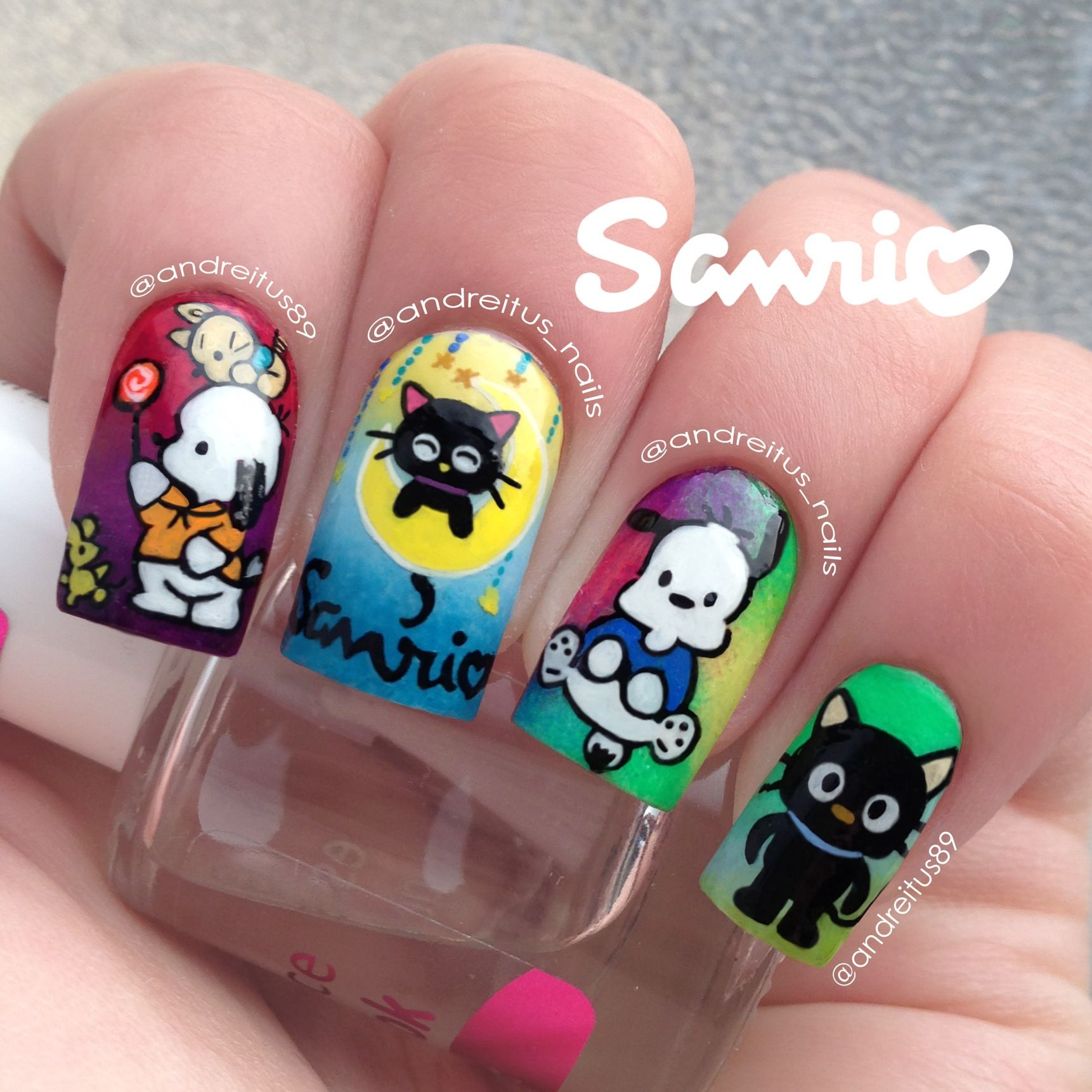 Sanrio Nails Chococat And Pochacco Nail Art Notd Nails