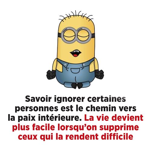 Je Suis Francais Votre Magazine Media Francophone Blagues Mignonnes Blague Minion Citation Humour