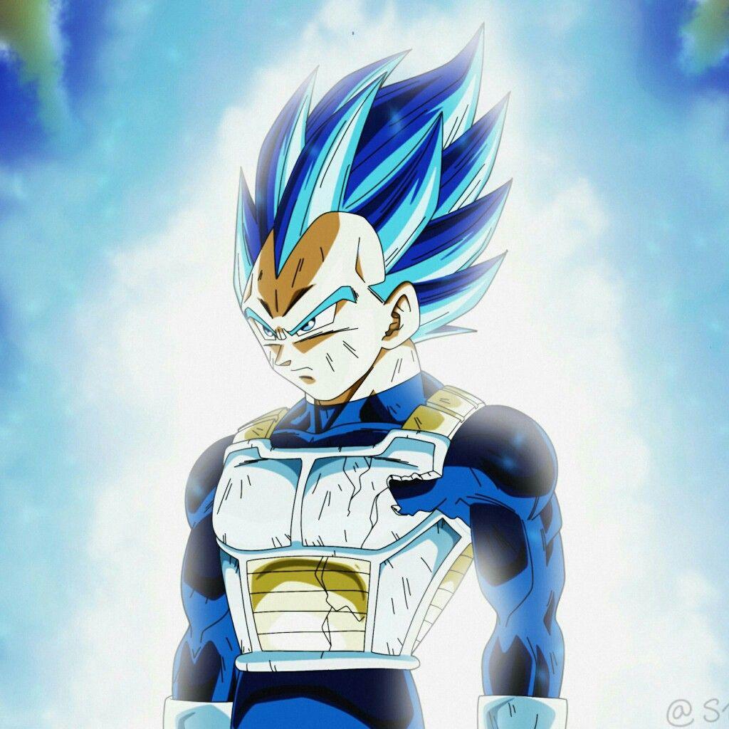 Vegeta Super Saiyan Blue Full Power Dragonballsuper Fotos