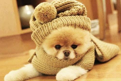 Alguém com frio aí? ❄
