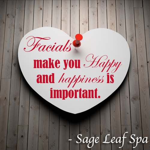 A #ValentinesDay themed #graphic for a #spa #business. We #love making #professional and #custom graphics! #SageSocial.