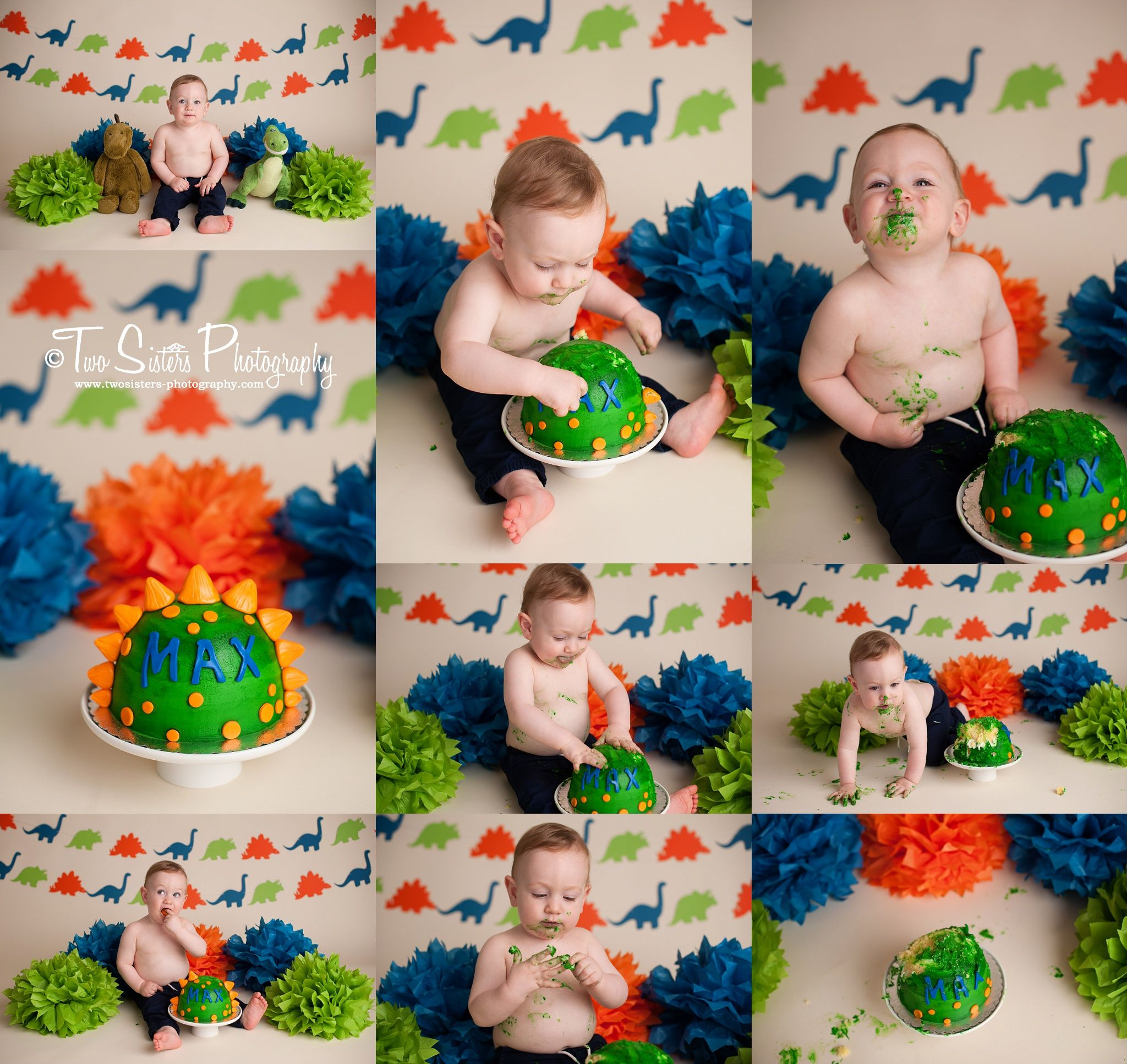Two Sisters Photography Dinosaur Cake Smash Session Blue
