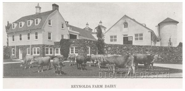 Dairy Nc Winston Salem Fresh