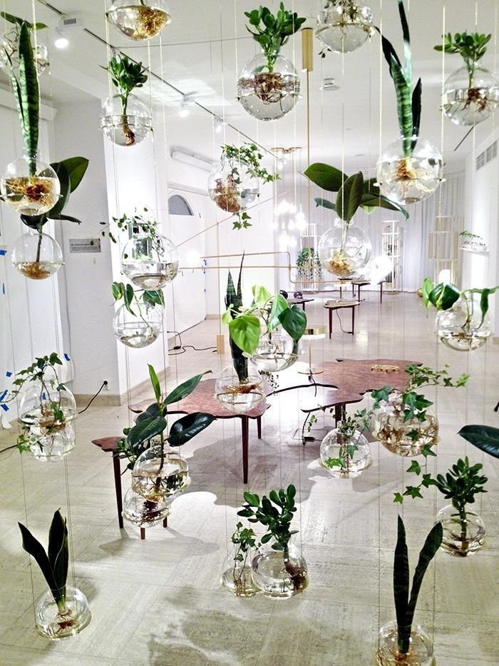 Astonishing Modern House Plants. Garden  Beautiful Indoor Modern House Design With Hanging Glass Plant Holders And Room White Interior Color Decorating Ideas Astonishing glass planters Plants Pinterest Planters and