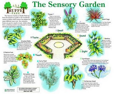 Sensory garden hope grows pinterest sensory garden garden sensory garden plan we could keep everything one level and frame on all sides or good for a small space garden or for wheelchair users workwithnaturefo