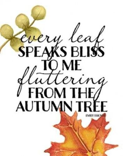 Autumn Tree Poster Print by Amy Cummings (11 x 14)