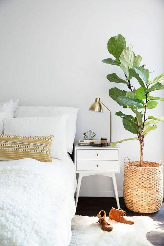 Minimalistisch Eingerichtetes Schlafzimmer Mit Doppelbett, Weicher  Plüschteppich In Weiß, Große Pflanze