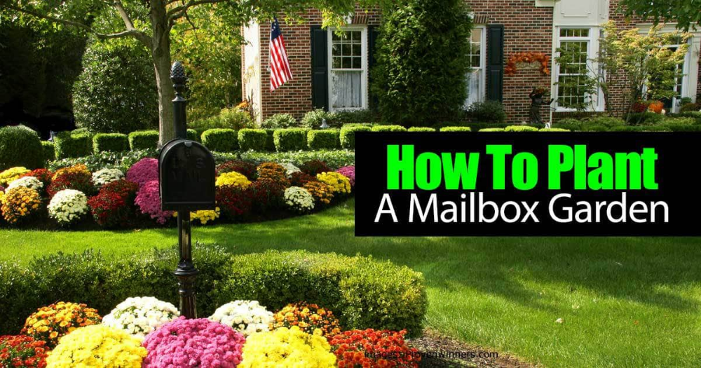A Garden Planted Around Your Mailbox Can Boosts Your Home S Curb Appeal In This Short Video The Folks At T Mailbox Garden Mailbox Landscaping Mailbox Flowers
