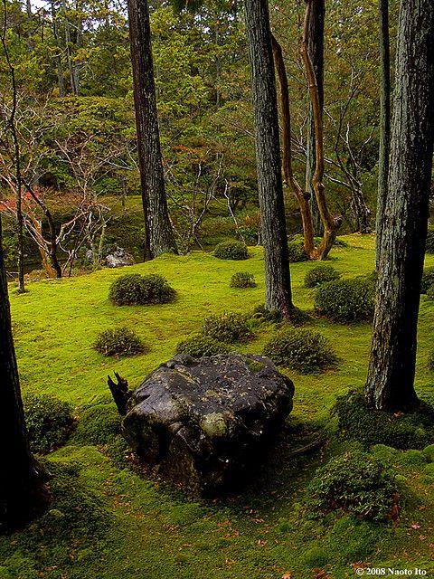 Saihoji temple a k a moss temple kyoto japan mousse - Jardin japonais mousse ...