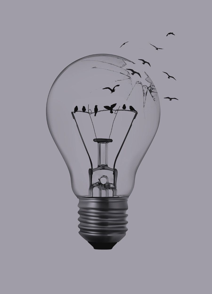 Image Result For Birds In A Light Bulb
