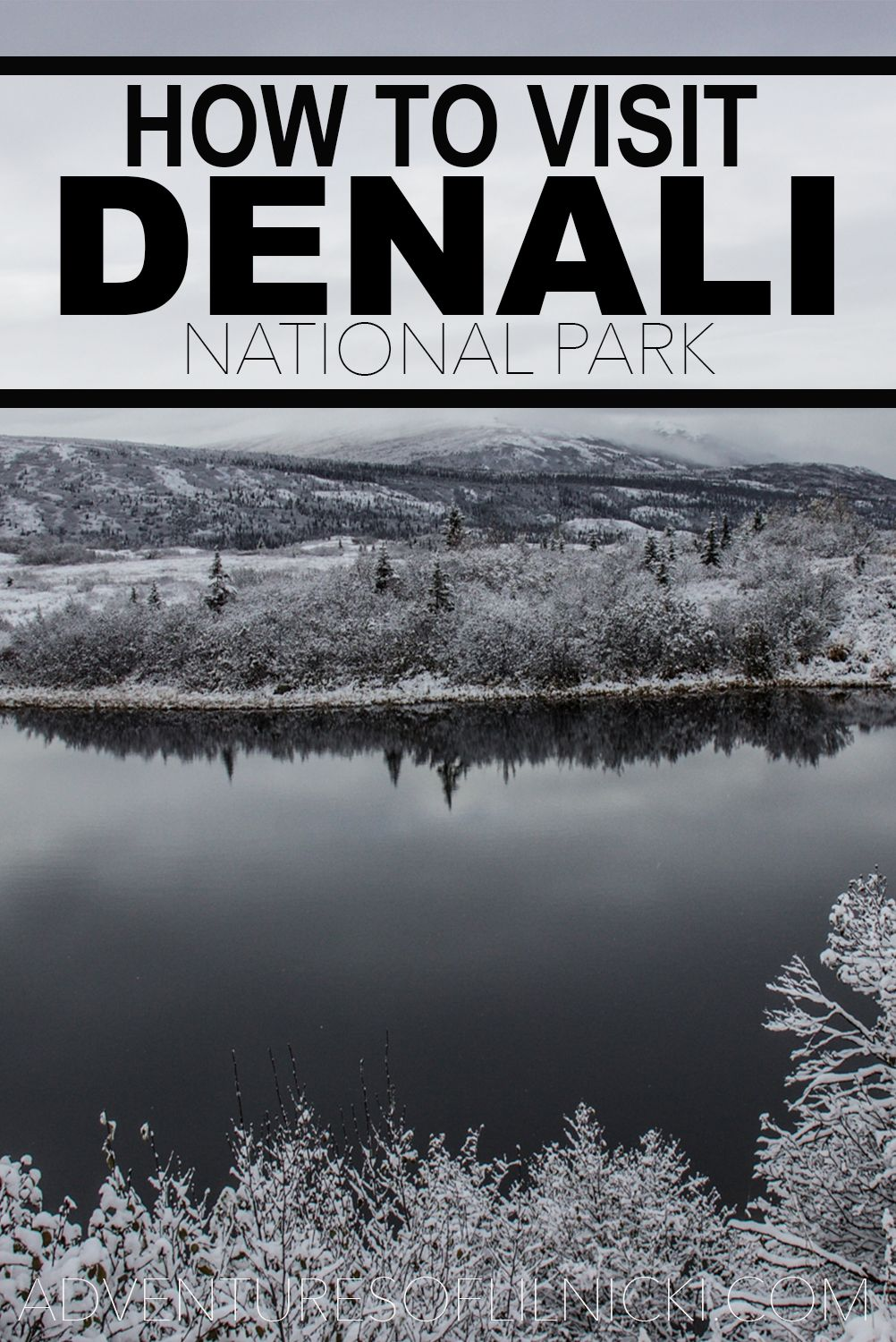 How To Get A Denali Road Lottery Permit Alaska travel