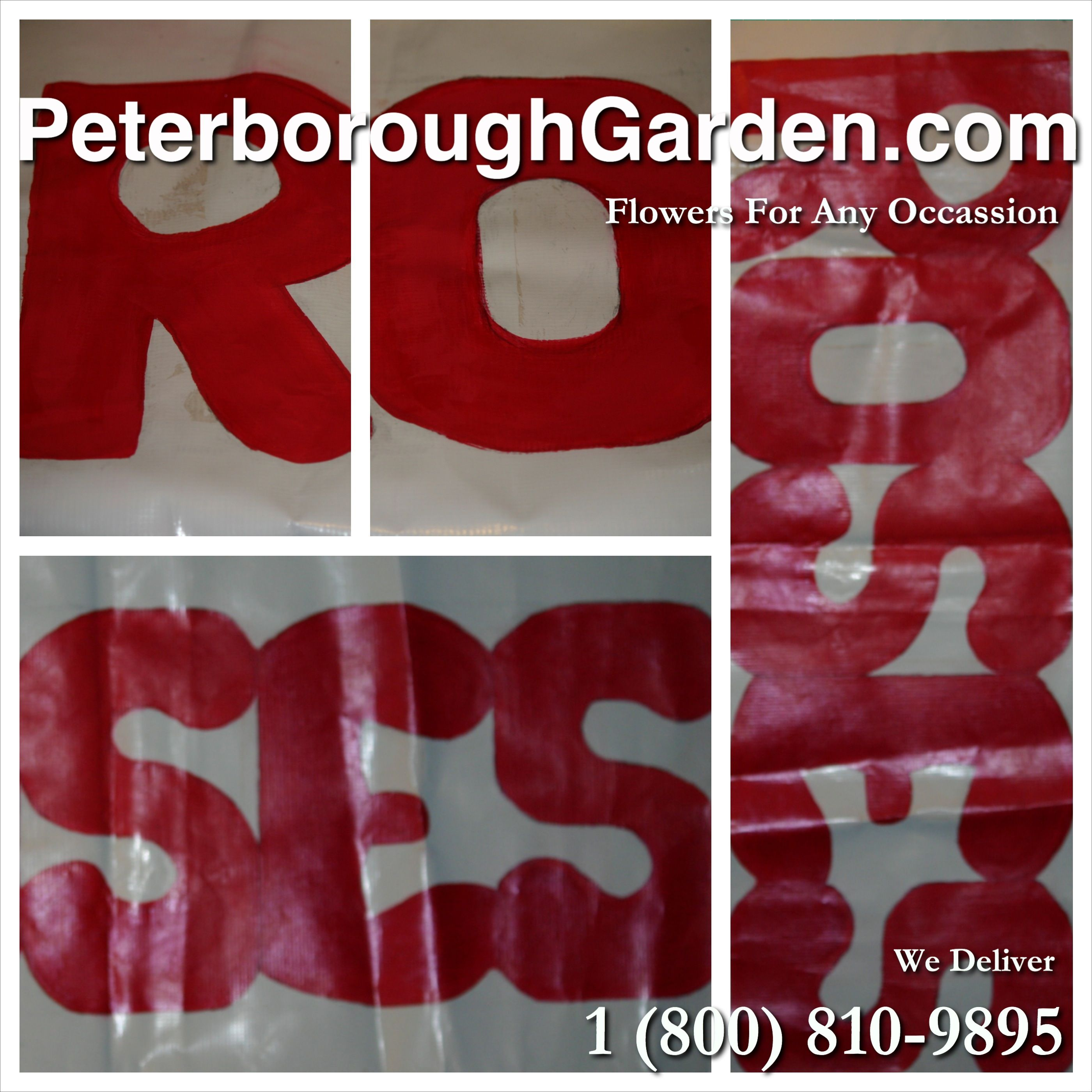 We sell roses in bulk, whether you need a 100 or 1000, call us at (705) 745-1428!