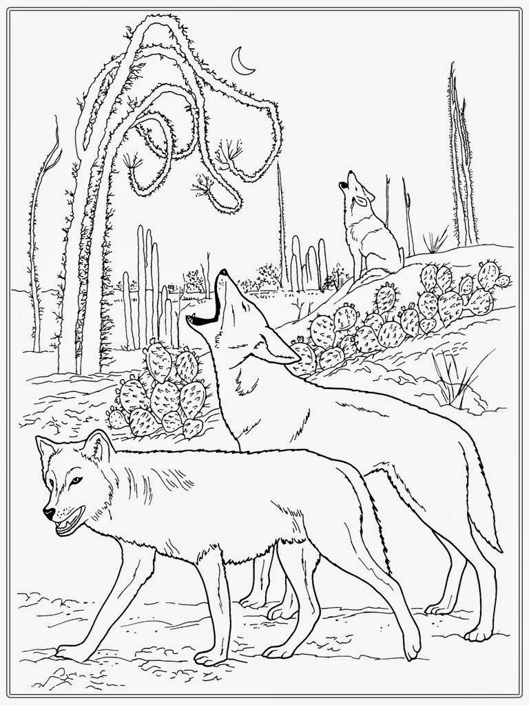 Realistic Wolf Adult Coloring Pages | adult coloring | Pinterest ...
