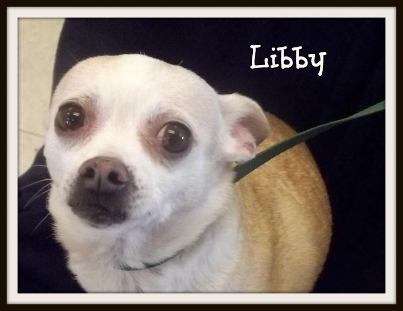 i found libby on