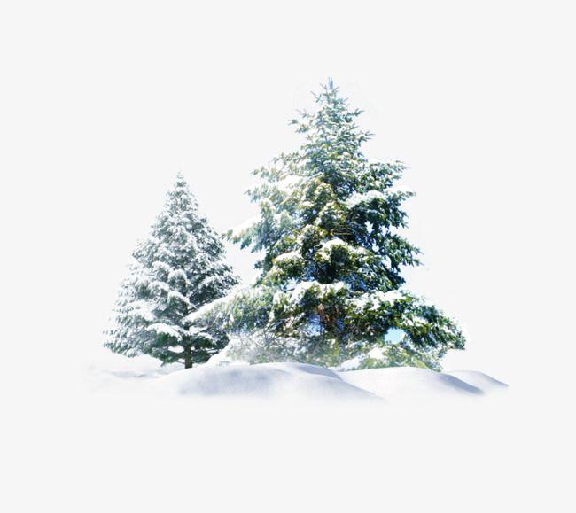 Christmas Snow Tree Creative Snow Tree Christmas Tree Clipart Christmas Tree Background