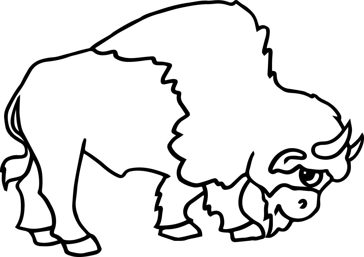 Awesome native american bison coloring page wecoloringpage