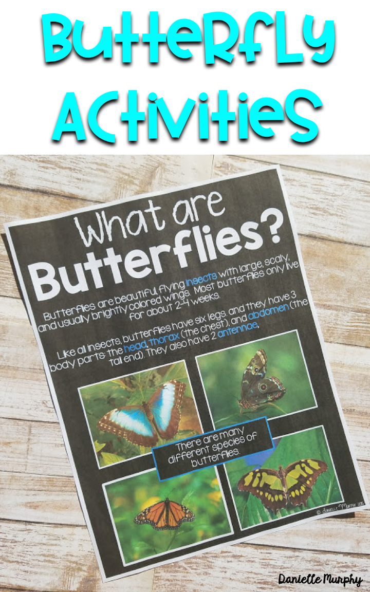 Butterfly Non Fiction unit for Kindergarten, First, Second Grade!  Posters, Anchor Charts, Life Cycle activities, printables, and more!  Perfect for Spring!