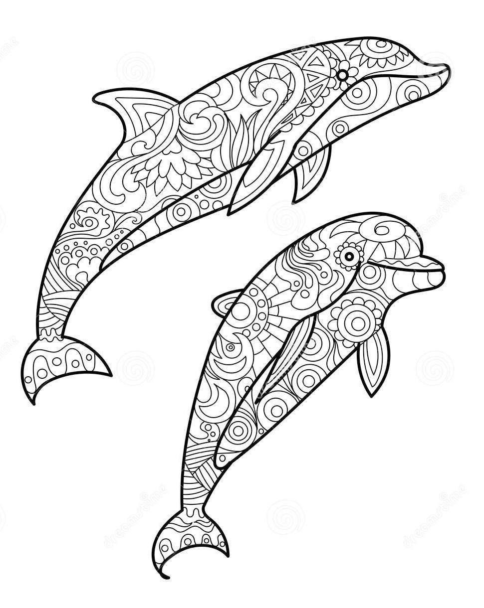 zentangle dolphin drawing Art Coloring Pages Designs
