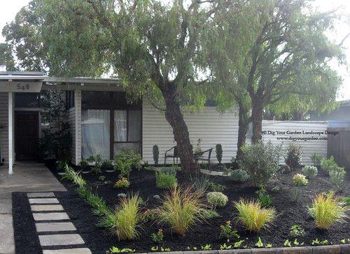 mid century front garden transformation in northern california houzz modern landscape