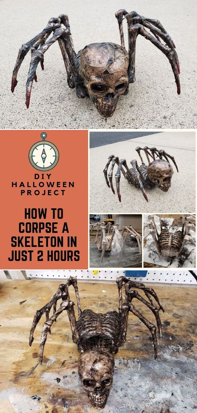 How to Corpse a Skeleton for Halloween, we're Numb With Fear