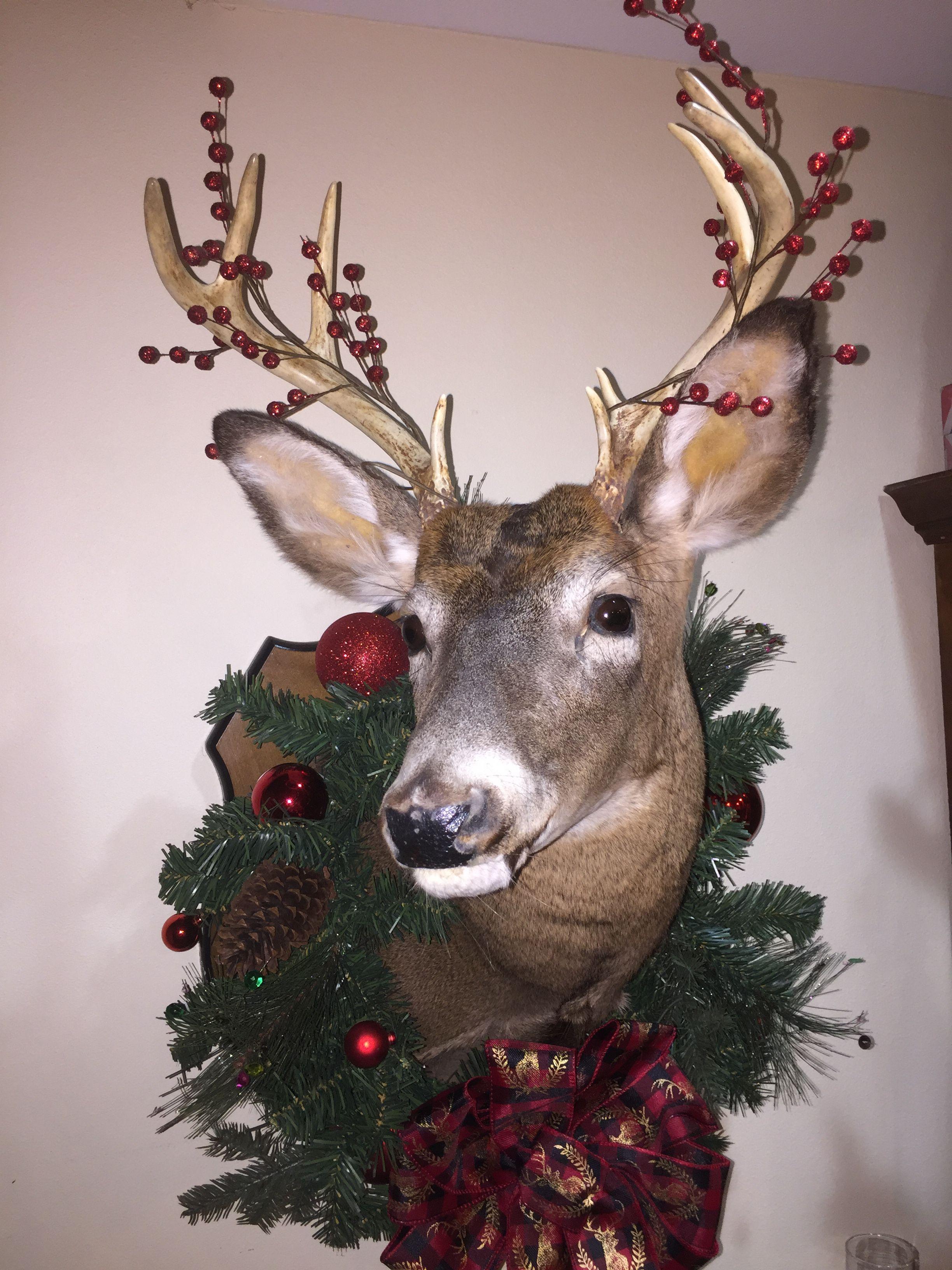 Christmas Decorated Deer Mount Je Suis Prest Outlander Deer