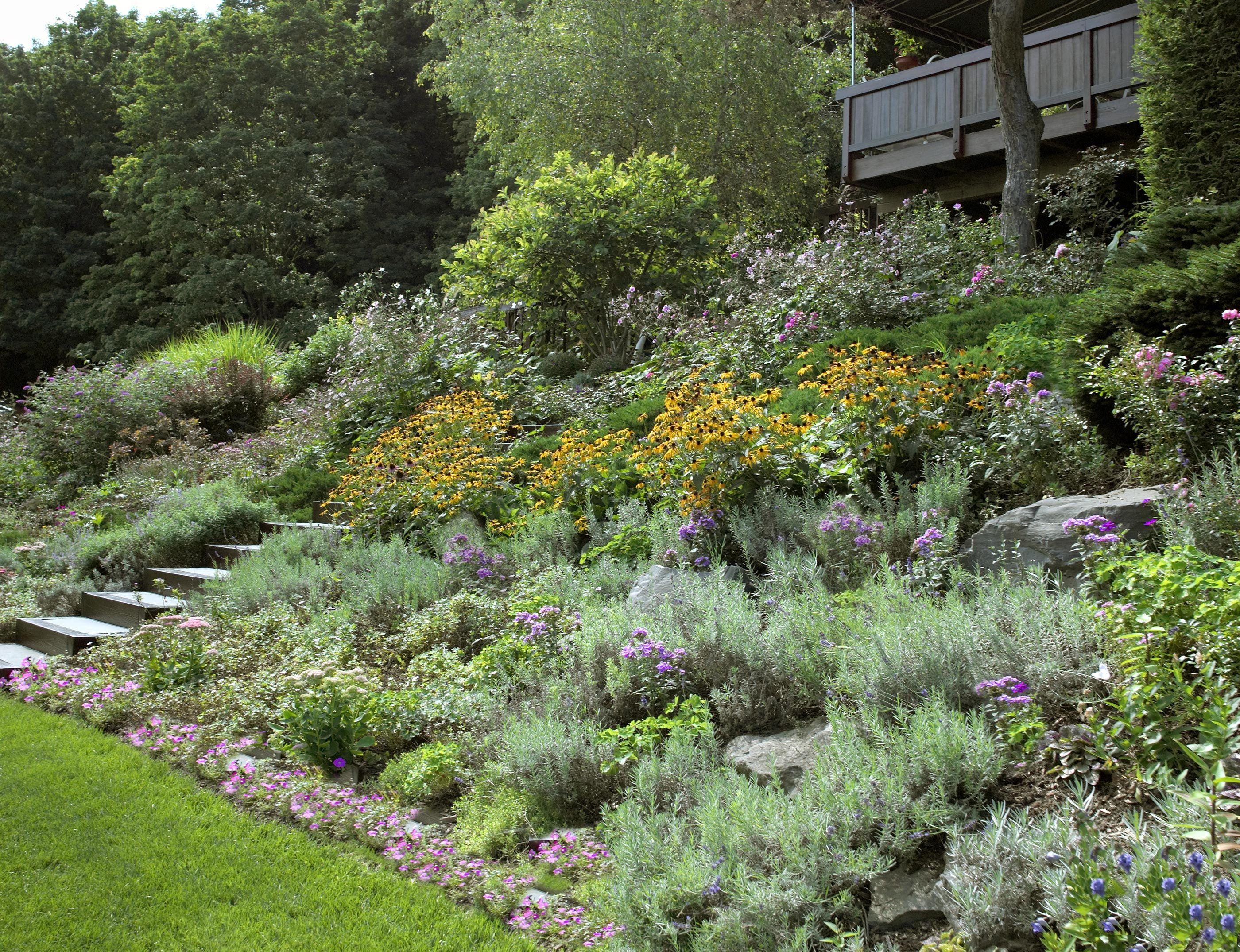 How to landscape a hillside - Hillside Garden Ideas Cadagu