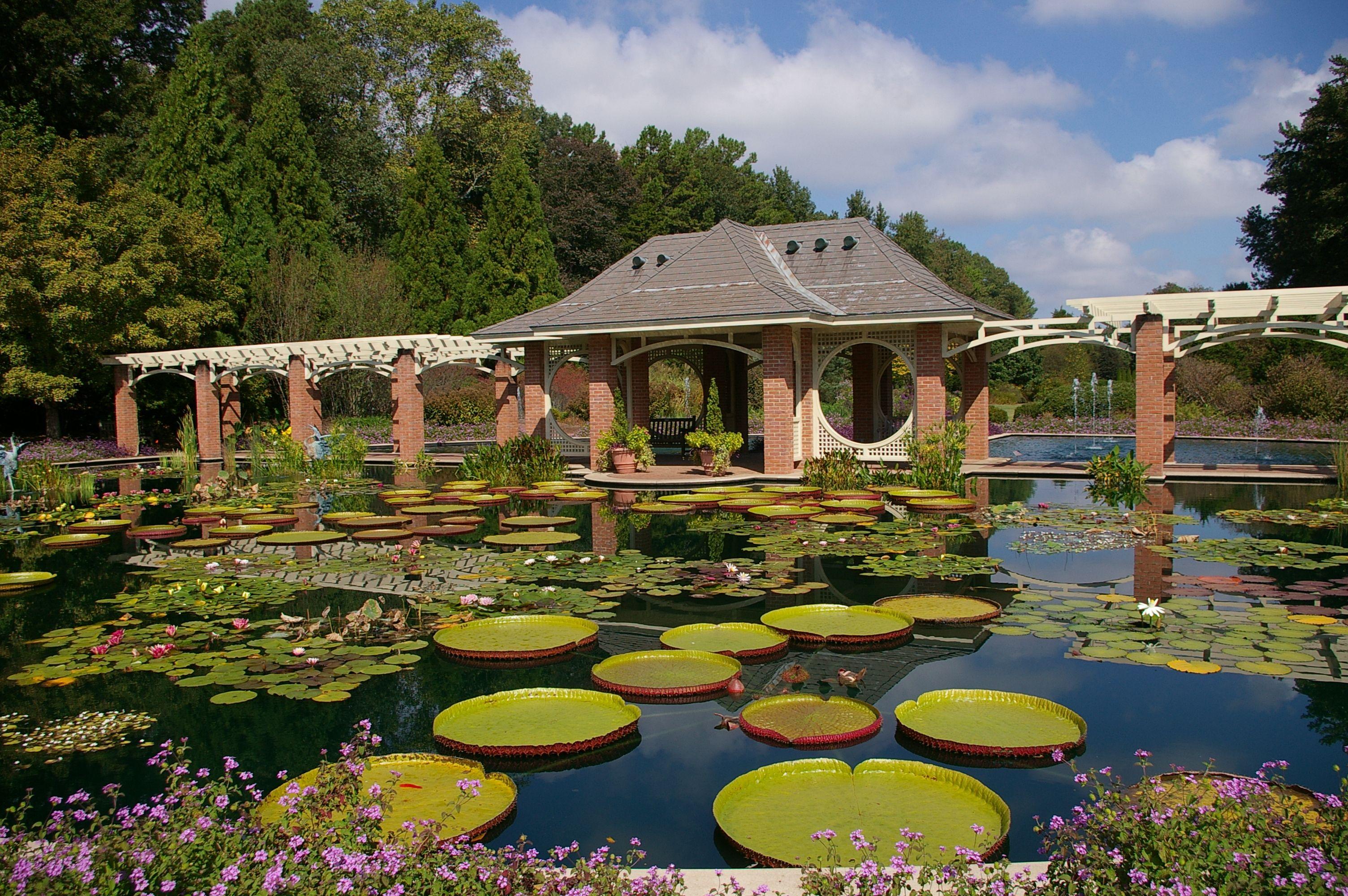 Huntsville Botanical Gardens, AL photo by me --Donna B. | My Travels ...