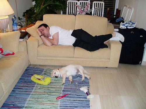 Søvn sykluser