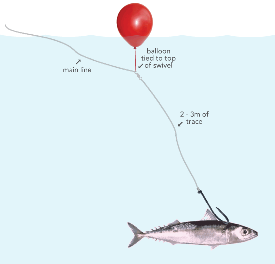 Make surf casting rigs google search fishing tips for How to make fish bait