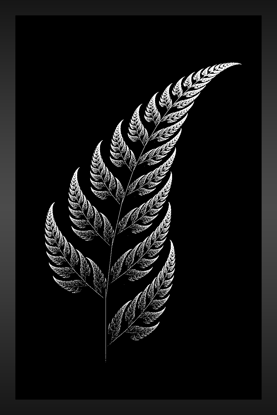 4ef2db18b Interesting twist on the silver fern. How to fade the black without looking  tacky though.