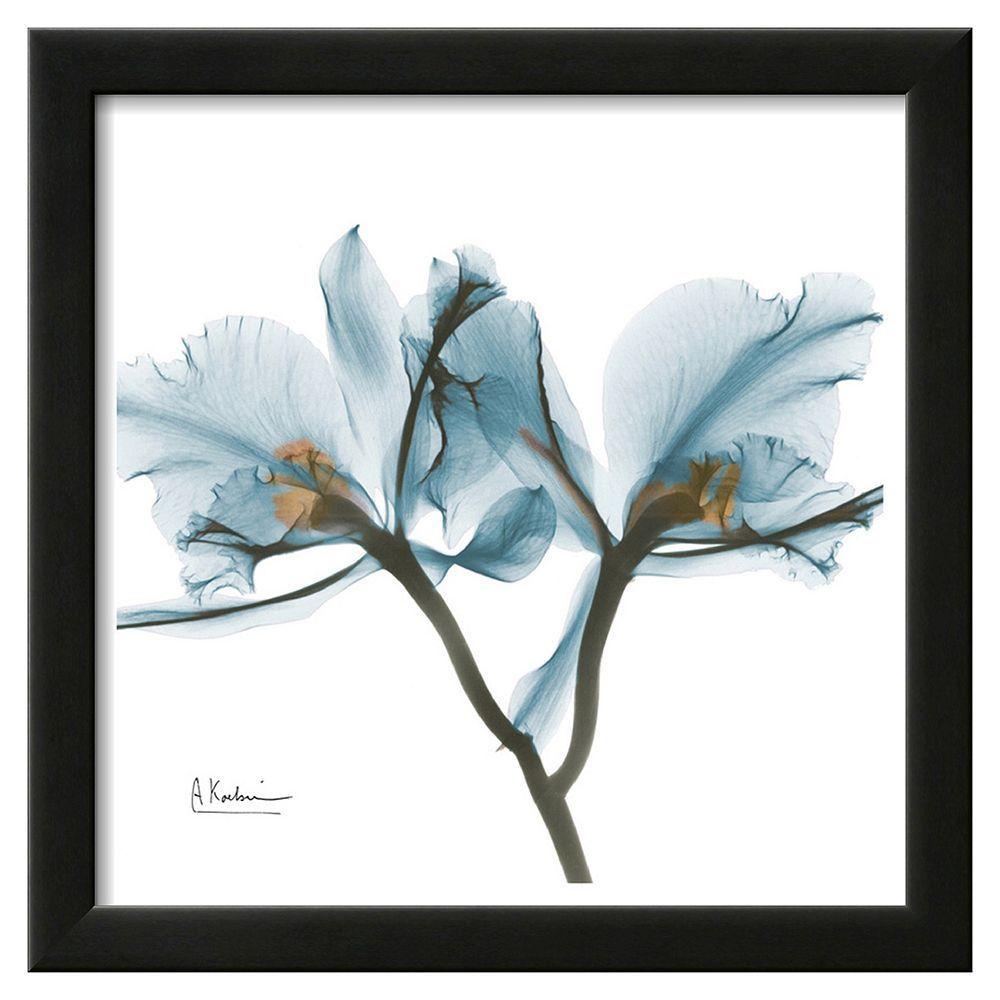 """Albert Koetsier X-Rayograph Print /""""Three Tulips/"""" Hand Signed /& Numbered"""