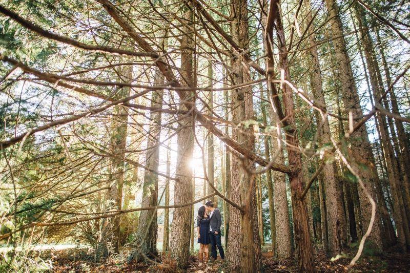 Breenhold Gardens Mt Wilson Tiffany Rob Pre Wedding Preweding