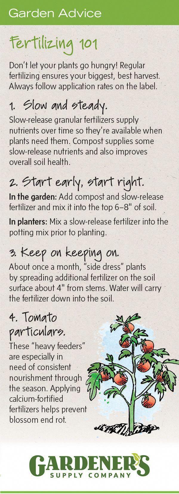 Fertilizer Basics Organic Npk Ratio Garden Ideas Pinterest Plants And Vegetable
